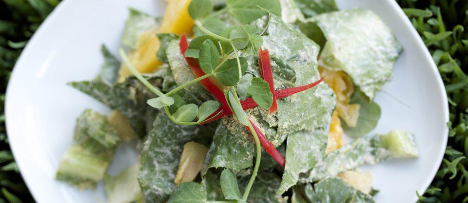 vegan molé caesar salad